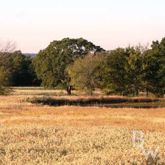 The Hunting Ranch